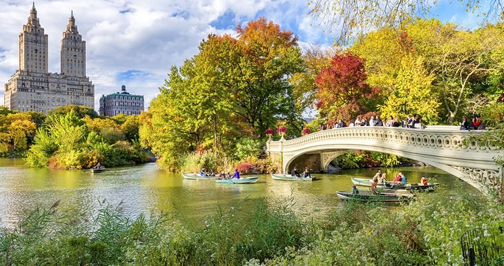 Best 5 Vacation Spots In New York